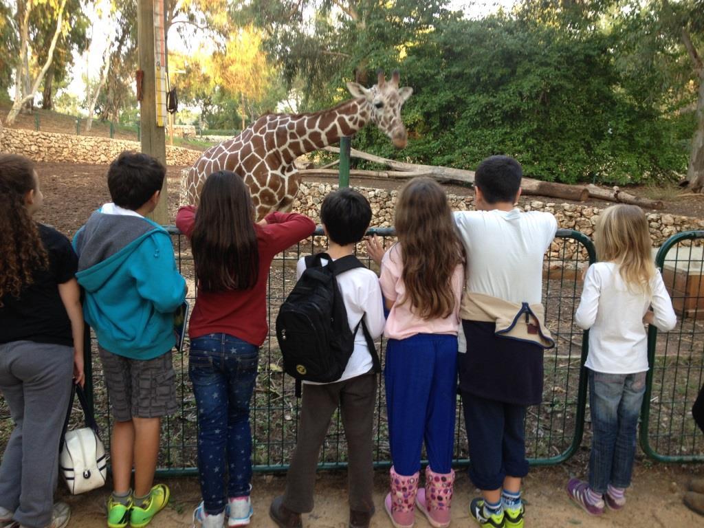 ילדים צופים על ג'ירפות